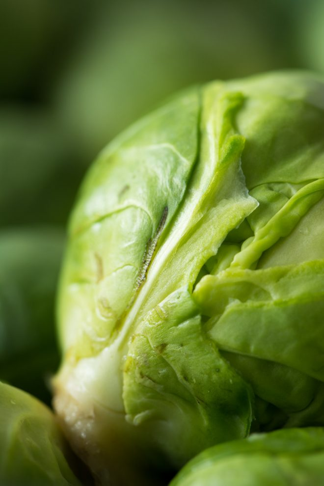 A close up image of a brussel sprout