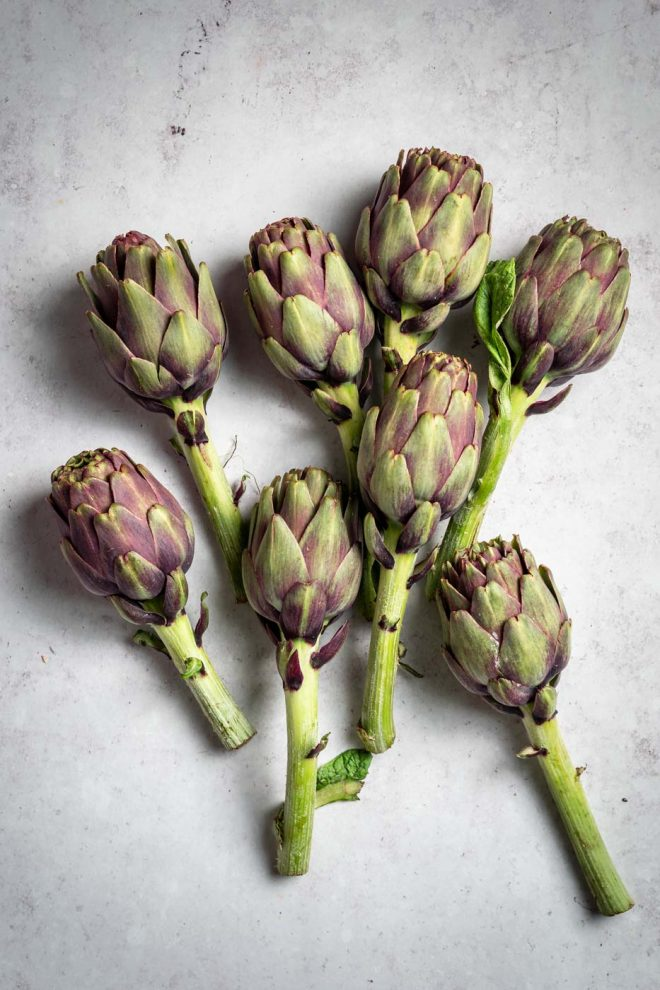 Photo of artichokes, photograph by Lauren Caris Short of Food Photography Academy