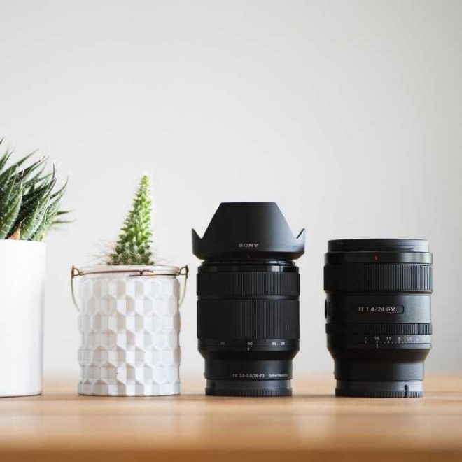 two camera lenses sit next to two house plants in a white containers